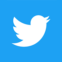 social icon - twitter